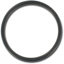"1-1/2"" Waterway union O-ring"