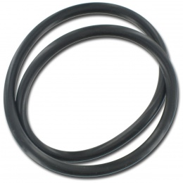 Sta-Rite O-ring for face plate